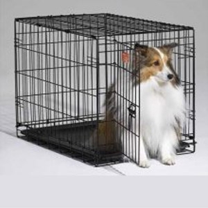 Midwest iCrate 1530 Single Door Folding Dog Crate