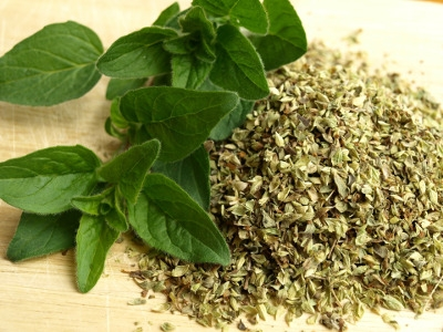 Herbs and More for Beginners