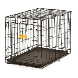 Midwest® Single-Door Dog Crate