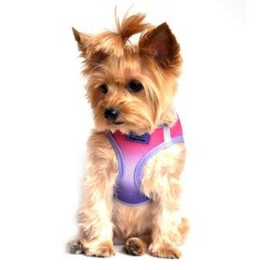 Choke-Free Dog Harness Ombre Collection - Raspberry Sundae