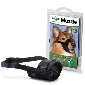 Large Muzzle