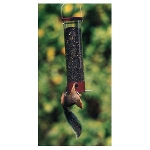 """Yankee Dipper Squirrel Proof Bird Feeder Burgundy 21"""""""