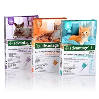 Advantage® II for Cats
