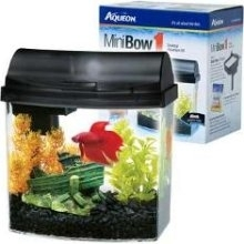 Mini Bow Desktop Kit 1.0 Black