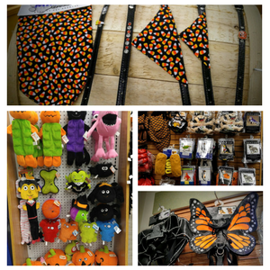 25% Off All Halloween Items!