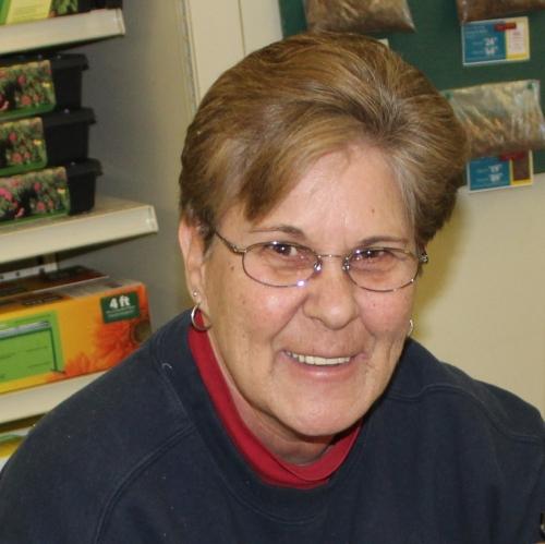 Linda Wojtach