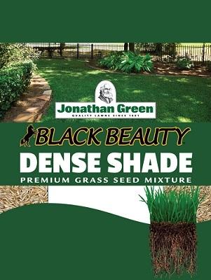 Jonathan Green Black Beauty™ Dense Shade Mixture Grass Seed