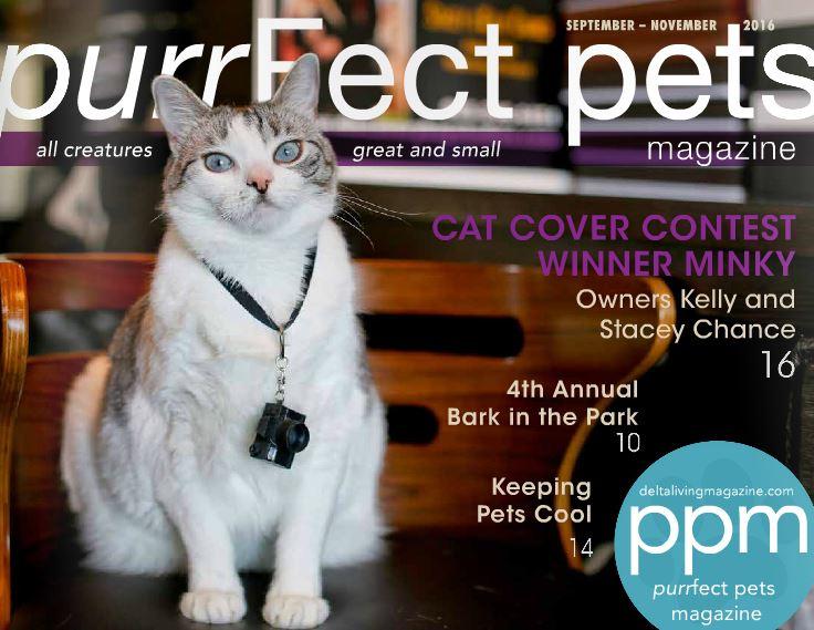 purrfect pets magazine