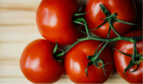 6 Secrets for Growing the Tastiest Tomatoes