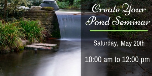 How To Create Your Pond Seminar