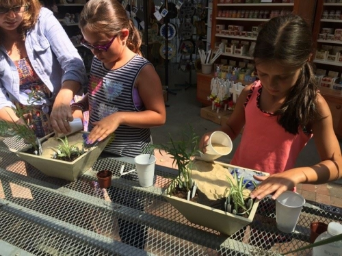 Miniature Garden Workshops for Kids