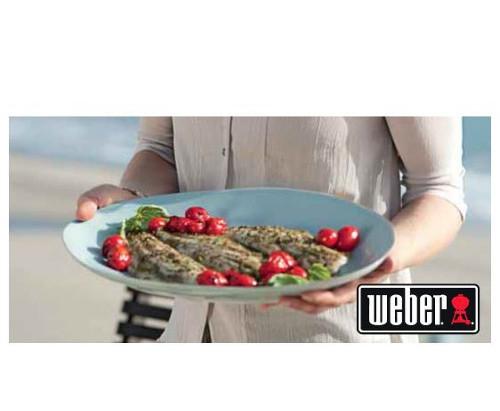 Full Service Weber Dealer