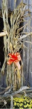 Corn Stalks & Straw Bales