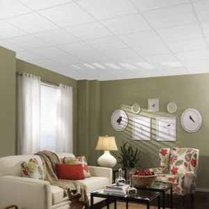 Zepher Ceiling Tile $47.84 Per Carton